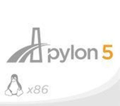 pylon - Linux x86