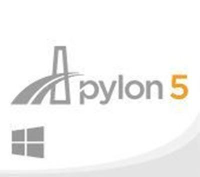 pylon - Windows